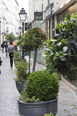 the Marais, Paris (by: Rodrigo SEPÚLVEDA SCHULZ, creative commons license)