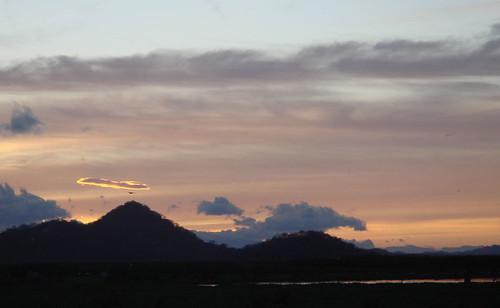 Palo Verde, patrullando la salida del Sol, Feb.09