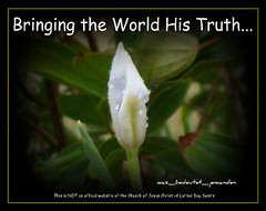 Bringing the World His Truth - logo5 (was_bedeutet_jemanden) Tags: pages titles paintnet blogpages httpbringtheworldhistruthblogspotcom