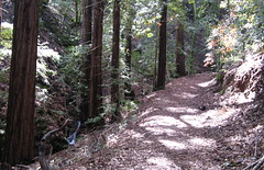 Trail to Triple Falls (Sveadal, California, United States) Photo