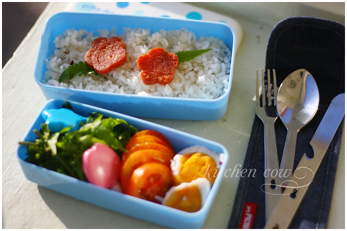 Bento with Fiddlehead Fern