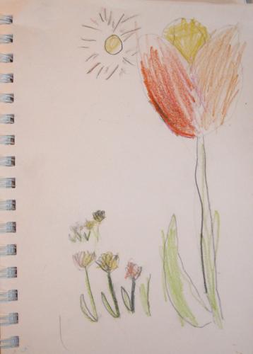 Tulip -- Nature Journal JD Boy age 6