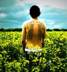 (Lisa Askew) Tags: uk flowers summer england sky colour nature beauty yellow tattoo angel clouds ink freedom countryside fly wings village norfolk flight feathers free jamesmarsters ely elegant wingstattoo rapeseed southery littleport wingtattoo colorphotoaward colourartaward jaymzmarsters