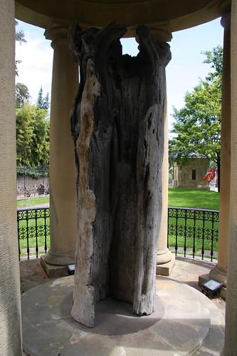 Original Tree of Guernica