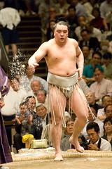 日馬富士 画像77