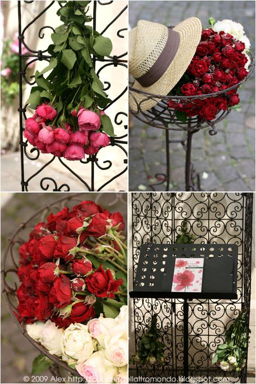 Rose e paravent
