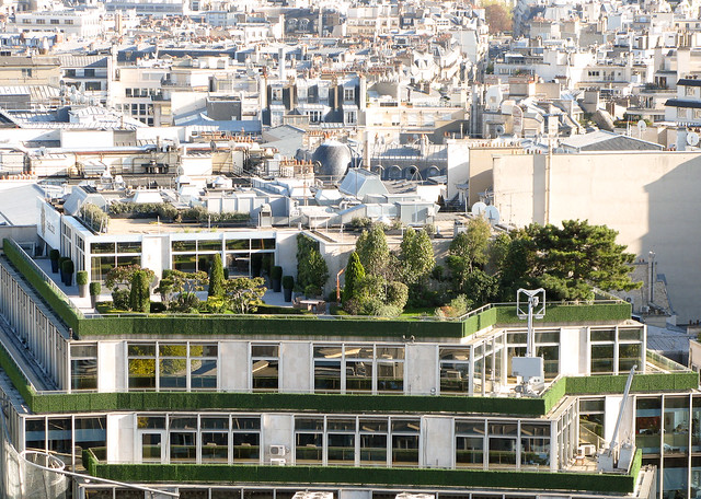 rooftop garden in Paris