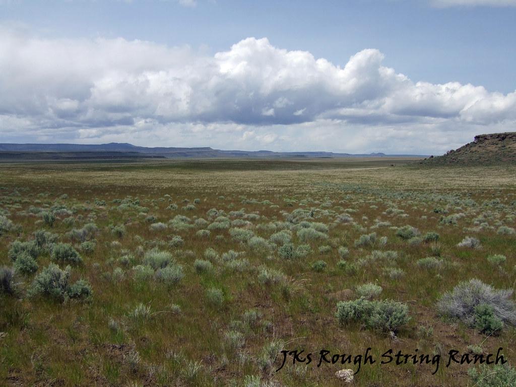 Great Basin High Desert