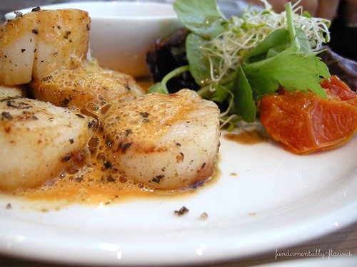 scallops close up