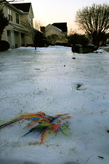 icepainting (elisabethlightly) Tags: winter sunset snow abstract ice nature yard project painting front 365 transparent watercolors