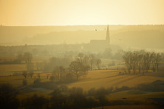 A hazy day in winter (HanslH) Tags: winter birds haze limburg lowsun zuidlimburg
