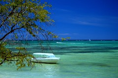 Beautiful summer day (Asadbabil (super busy)) Tags: ocean blue sea summer vacation tree nature clouds sailboat canon boats boat sand eod mauritius blueocean 400d mywinners aplusphoto