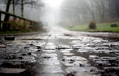 (andrewlee1967) Tags: road uk trees england mist wet rain fog fence britain lancashire gb greenfield cobbles puddles damp ef35mmf2 andrewlee 50d mywinners andrewlee1967 canon50d