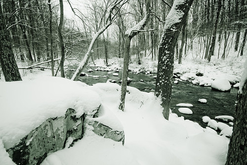 Stone on Riverbank