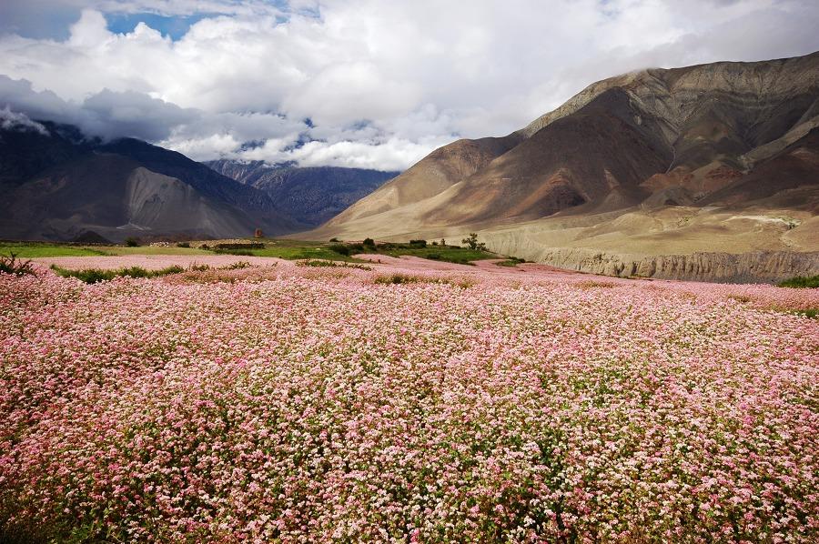 尼泊爾山區