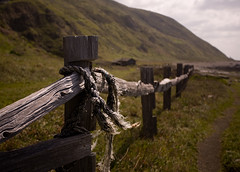 Lost Fence (Petrolia, California, United States) Photo