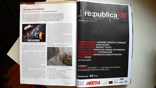 Katzencontent im T3N Magazin