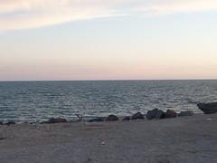 100_2115 (Seraphim2581) Tags: beach mexico rockypoint peasco