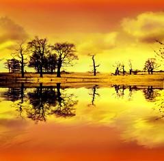 (digitalpsam) Tags: sunset england orange art beautiful creative dream serene coventry warwickshire sammatta