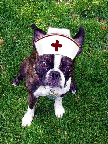 nurse ruby