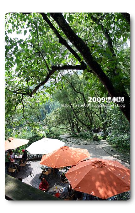 090427_13_油桐花坊