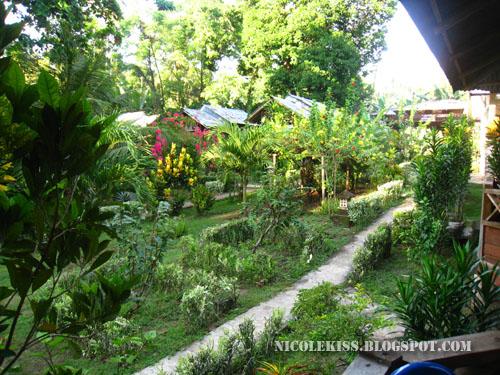 daniel home stay garden