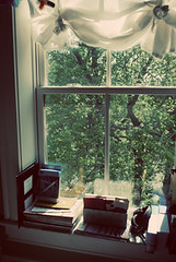 Office window