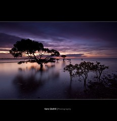The Coming Rain. ([ Kane ]) Tags: longexposure trees sun tree water clouds dusk smooth australia brisbane qld queensland kane gledhill canon50d kanegledhill kanegledhillphotography