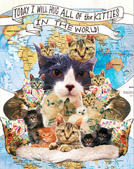 MSNTCE: Day 11 (Willbryantplz) Tags: silly cat globe kitten feline kitties hugs notcool msce msntce meemur