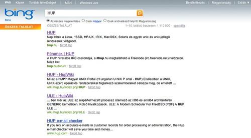 Microsoft Bing (beta)