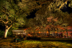Just outside the reception tent (MDSimages.com) Tags: world lighting county city travel trees wedding usa tree night digital america photography evening blog nikon media unitedstates florida south north central marion tent east celebration event processing northamerica southeast cart hdr ocala lightingdesign travelphotography weddingdecorations lightingdesigner lightingdirector specialeventlighting michaelsteighner mdsimages hyliteproductions ocali specialeventdecor photomike07 mdsimagescom hylitecom