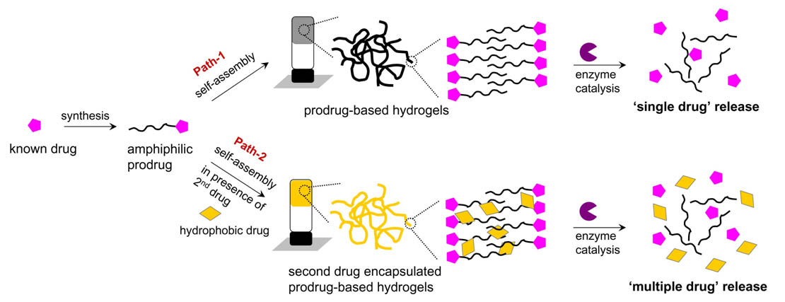 Self-Assembled Drugs