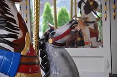 Nunley's Carousel - Mitchel Field, Long Island - June 13, 2009 072 (TVL1970) Tags: geotagged nikon carousel longisland amusementpark carouselhorse gp1 d90 nunleys mitchelfield nikond90 steinandgoldstein steingoldstein nikkor18105mmvr 18105mmvr nikongp1 nunleyscarousel woodcarvedhorses nunleysamusementpark artisticcarouselmanufact