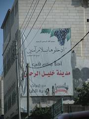 على مدخل الخليل (HanadiTalk) Tags: مدينة عنب فلسطين القدس ارض الخليل رامالله كروم