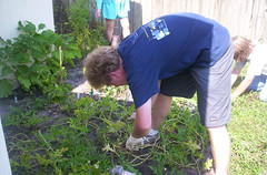 brevard center gardening club