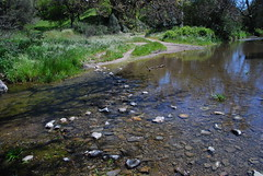 Creek crossing Photo