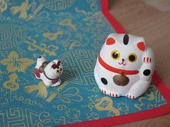 Japanese cat and dog
