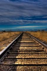 Tracks 01 (joor
