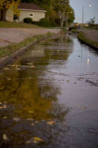Drainage Ditch Reflections