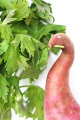 Apotatosaurus Dulcis (RR) Tags: food orange plant playing silly green funny with dinosaur please sweet yes humor vegetable yam potato p root freetime edible celery dinosaurs vegetal pommedeterre anthropomorphic playingwithfood batata alotof anthropomorph cleri apio sellerie aipo patatedouce kereviz thenext antropomrfico partofthe batatadoce antropomorfico anthropomorphe salso canwe idohave subjectnow pommedeterredulce potatosaurusdulcis moveonto spreadhumorcoalition sweetfoodartpotato brincandocomacomidablog