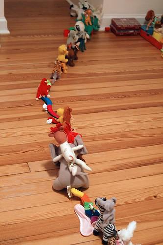 Animal parade.