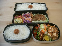 Husband/wife bentos (skamegu) Tags: food tomato rice tofu bento japanesefood coleslaw    whiterice satsumaimo