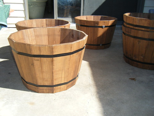 Gardening in Barrels
