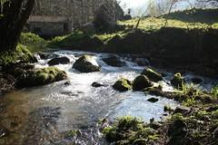 Muio no rio Loira (_madmarx_) Tags: verde rio marin molino galicia pontevedra breathtaking watermill loira auga muio sinretocar flickraward platinumheartawards flickrestrellas quarzoespecial breathtakinggoldaward madmarx
