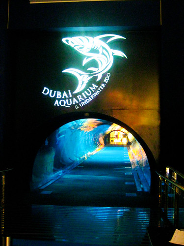 Dubai Mall Aquarium walk-through Tunnel
