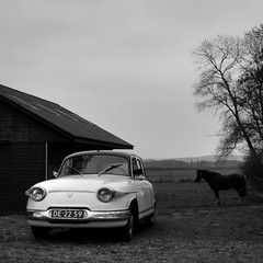 In the country (Hans van Reenen) Tags: autumn bw horse car countryside classiccar fav50 nederland thenetherlands sparrow countrylife groesbeek panhard reichswald wylerbaan fav80 fav70 gx100 20081115