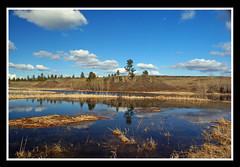 Spring sun at Smick Pond (Carplips) Tags: blue sky white reflection water clouds still pond rocks cliffs cattails cumulus diamondclassphotographer flickrdiamond
