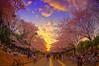 Tokyo Cherry Blossom (/\ltus) Tags: sunset japan tokyo pentax 桜 日本 sakura cherryblossoms 東京 hdr hanami 花見 駒沢公園 komazawapark 駒沢 日の入 japanhdr k20d ペンタクス