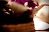 (Julia Moreira) Tags: blur flower bokeh flor violet naturallight canoneos20d 2009 violeta desfoque nikonlens novosângulos luznatural ilovethislens 50mmnikon newangles notthroughtheviewfinder outrosângulos otherangles nikononcanon juliamoreira nikontocanonlensadapter nikkorsc1450mm thelensusedisover30yearsold daddyslens semolharpelovisor outrosângulosnovosângulos ©juliamoreira