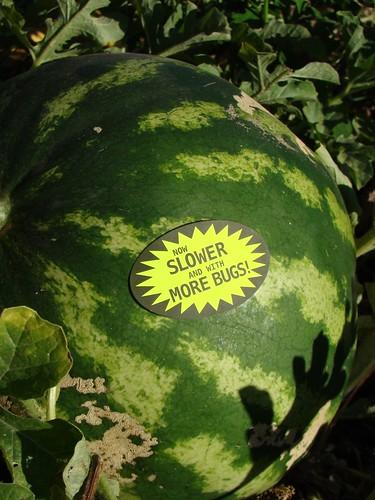 Organic Gardening Stickers